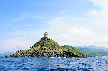 Tour de la Pirata, a 17th Century Genoese watchtower on Punta de la Pirata Near Ajaccio, Corsica, France, May 2010  -  Nick Upton/ npl