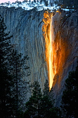 The snow at Horsetail Falls' begins to melt in mid-February, enabling the falls to resume once again The clear sky and low sun angle ignite the rock wall during sundown Yosemite National Park, Califor...  -  Diane Mcallister/ npl