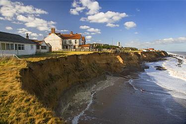 Coastal erosion, crumbling sea cliffs, Happisburgh, Norfolk, UK  -  Ernie Janes/ npl
