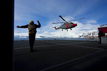 Naval helicopter landing on deck of Royal Navy ship, HMS Endurance, Antarctica, November 2008 Taken on location for the BBC series, Frozen Planet  -  Jeff Wilson/ npl