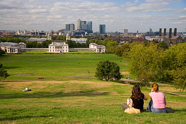 Greenwich Park with Canary Wharf in the background, Greenwich, London, UK  -  Ernie Janes/ npl