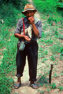Peasant Coca farmer chewing coca leaves as a stimulant Cochabamba, Bolivia  -  Jeff Rotman/ npl