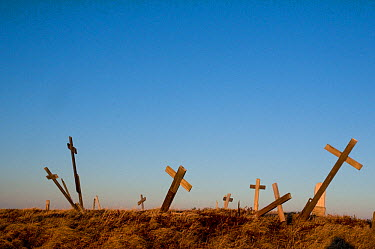 Crosses, marking grave sites at a cemetery in the Inupiaq village of Point Lay, slump from melting permafrost, along the arctic coast of Alaska, USA, June 2011  -  Steven Kazlowski/ npl