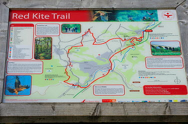 Red Kite trail map in the Urban Red Kite area of the Derwent Valley, Gateshead, Tyne and Wear, UK, on the edge of Tyneside following on from the 'Northern Kites' re-introduction programme between 2004...  -  Rob Jordan/ 2020V/ npl