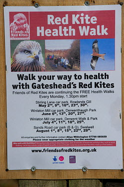 Red Kite trail sign in the Urban Red Kite area of the Derwent Valley, Gateshead, Tyne and Wear, UK, on the edge of Tyneside following on from the 'Northern Kites' re-introduction programme between 200...  -  Rob Jordan/ 2020V/ npl
