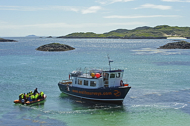 Sea Life Surveys passengers leaving the Cairns of Coll in an inflatable boat, heading towards the Sula Beag, a dedicated wildlife watching boat, Inner Hebrides, Scotland, UK, July 2011  -  Chris Gomersall/ 2020V/ npl