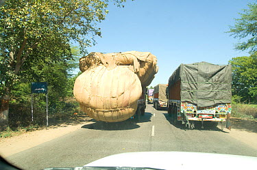 Dangerously overloaded lorry overtakes on main road, Rajasthan, India  -  Michael W. Richards/ npl