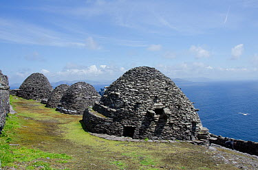 Part of the Summit monastery showing 6th century beehive cells now occupied by large numbers of Storm Petrels, Co Kerry, Ireland, June 2011  -  Roger Powell/ npl