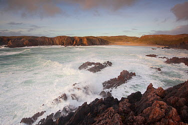 Stormy waves breaking on rocks, seen from a clifftop looking towards the beach, Traigh Mangerstadh, Isle of Lewis, Outer Hebrides, Scotland, UK, October 2010  -  Peter Cairns/ 2020V/ npl