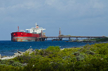 Tanker at BOPEC (Bonaire Petroleum Corporation NV) trans shipment and storage terminal A deep-water port, with facilities for transferring oil from ocean-going to coastal tankers Bonaire, Netherlands...  -  Pete Oxford/ npl