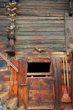 Traditional timber doors and walls with sheep horns and horse-shoes, Zermatt, Alps massif, Switzerland, April 2011  -  Inaki Relanzon/ npl