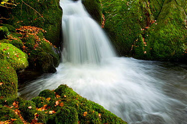 Water running into pool at the base of a waterfall, Stock Ghyll, Lake District NP, Cumbria, England, UK, November  -  Ben Hall/ npl