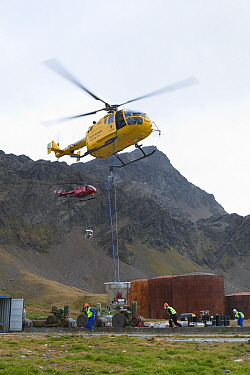 Helicopter taking off with bait bucket after refueling, second helicopter waiting for refueling, South Georgia Heritage Trust Rat Eradication Project, Grytviken, South Georgia, March 2011  -  Ingo Arndt/ npl