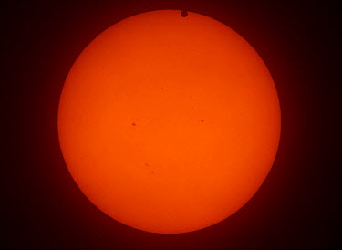 The transit of Venus across the face of the sun, with visible sunspots, as seen from Aurora, Colorado, USA, 1624 local time, 5 June 2012  -  Charlie Summers/ npl