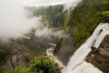 Jog Falls on the Sharavathy river, Western Ghats, Southern India  -  Sandesh Kadur/ npl