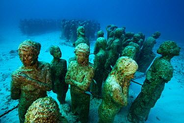 Submarine statues at the MUSA Cancun Underwater Museum, a conservation project to promote the growth of coral Isla Mujeres, Cancun National Park, Caribbean Sea, Mexico  -  Claudio Contreras/ npl