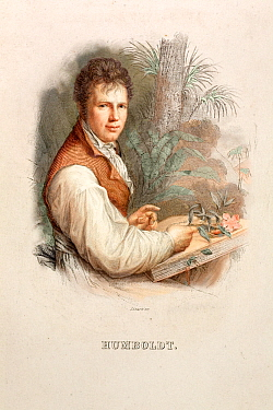 Portrait of Friedrich Alexander von Humboldt (14th September 1769, 6th May 1859), Lizars' Steel engraving c 1830 with hand colouring after the 1806 painting by Friedrich Weitsch A German explorer and...  -  Paul D Stewart/ npl