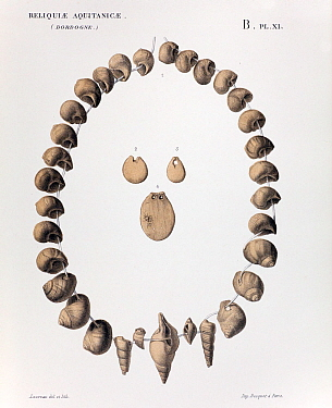 Chromolithograph illustration of perforated Cromagnon 30,000 ybp ornaments (shell, ivory), by Edouard Lartet and Henry Christy 'Reliquiae Aquitanicae' 1865-1875, Williams and Norgate, London 1875 They...  -  Paul D Stewart/ npl
