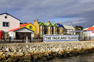 Port Stanley, captial of the Falklands; East Falkland, Falkland Islands, South Atlantic Ocean February 2007  -  Konrad Wothe/ NPL