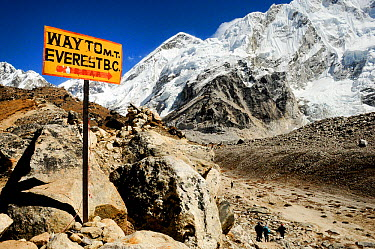 Way to Everest Base Camp sign, Khumbu Glacier, Sagarmatha National Park (World Heritage UNESCO) Khumbu, Everest Region, Nepal, Himalaya, October 2011  -  Enrique Lopez Tapia/ npl