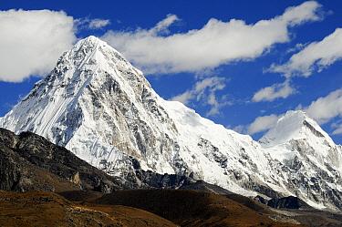 Pumori Peak (7145 m), Khumbu valley Sagarmatha National Park (World Heritage UNESCO) Khumbu, Everest Region, Nepal, Himalaya, October 2011  -  Enrique Lopez Tapia/ npl
