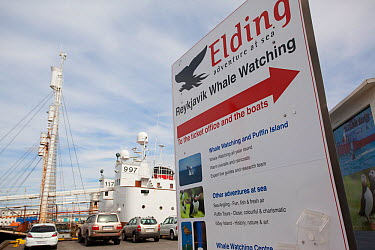 Promotions for whale and seabird watching tours from Reykjavik harbour, Iceland, June 2011  -  Pete Cairns/ npl