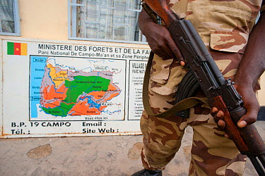 Armed Eco-Guard at National Park Headquarters at Camp Ma'an National Park, Southern Cameroon  -  Jabruson/ npl