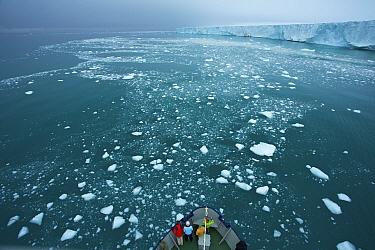 Expedition cruiseship M, S Stockholm cruising through drift ice next to Brasvellbreen glacier, Austfonna, Nordaustlandet, Svalbard, Norway, July 2012  -  Florian Mollers/ npl