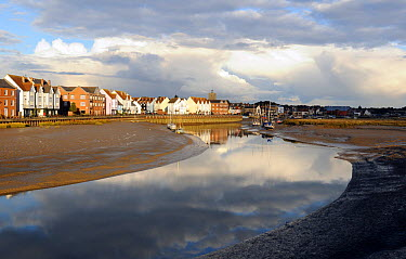 Wivenhoe and the Colne Estuary during low tide, in evening light, Essex, UK October 2012  -  Will Watson/ npl