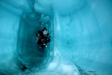 Scuba diver inside a cave ice, Lake Sassolo, Sambuco valley, Ticino, Switzerland  -  Franco Banfi/ npl