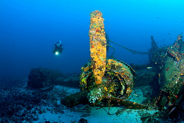 Scuba diver exploring the wreck of aeroplane 'B-24 Liberator' Vis Island, Croatia, Adriatic Sea, Mediterranean  -  Franco Banfi/ npl