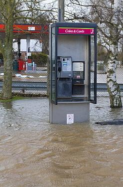 Flooded phone box during February 2014 floods, Upton upon Severn, Worcestershire, England, UK, 8th February 2014  -  David Woodfall/ npl