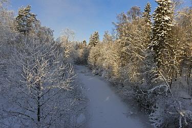 Frozen river in winter, Tourujoki, central Finland, January  -  Unknown photographer