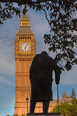 Houses of Parliament and statue of Winston Churchill, Westminster, London, June 2013  -  Ernie Janes/ npl