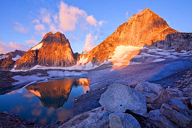 Snowpatch (left) and Bugaboo (right) spires rise above the Crescent glacier at sunrise, Bugaboo Provincial Park, British Columbia, Canada, August  -  Floris Van Breugel/ npl