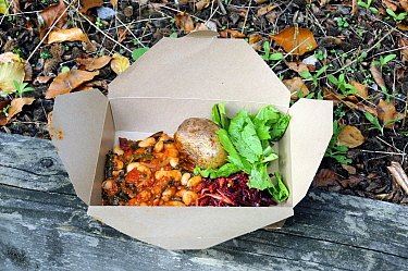 Take away food served in a cardboard box which can be recycled, Walthamstow, London Brough of Waltham Forest, England, UK, October 2013  -  Pat Tuson/ npl