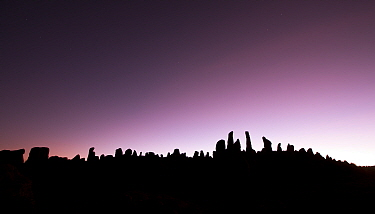 Granite pillars silhouetted at twilight, at Rafu, Bale Mountains National Park, Ethiopia, December 2011  -  Will Burrard-Lucas/ npl