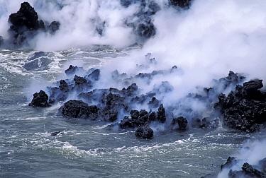 Thick steam billows rising where lava flow enters the sea  -  Tui De Roy/ npl