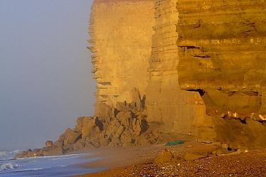 Rock fall at base of cliff near Burton Bradstock, Jurassic Coast, Dorset, UK, February 2014  -  Colin Varndell/ npl