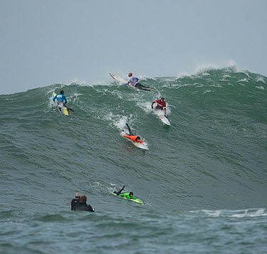 Surfers competing in the Mavericks 2014 surfing competition, Half Moon Bay, California, USA, January 2014  -  Michael D. Kern/ npl