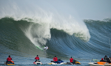 Surfer competing in the Mavericks 2014 surfing competition, watched by people on jet skis, Half Moon Bay, California, USA, January 2014  -  Michael D. Kern/ npl