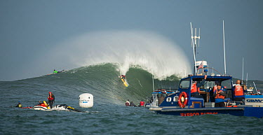 Harbour patrol boat and surfers competing in Mavericks Surfing Competition 2014, Half Moon Bay, California, USA, January  -  Michael D. Kern/ npl