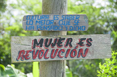 Politcial slogans nailed to a tree stating: Culture is knowing the best that has been thought and said and Woman is revolution near Baracoa, Cuba, November 2011  -  npl/ npl