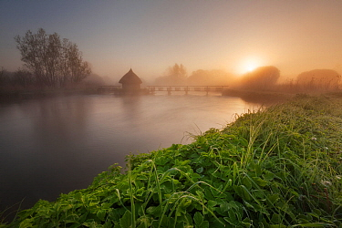 Thatched fishermans hut and eel traps spanning the River Test at dawn, near Leckford, Hampshire, England, May 2012  -  Guy Edwardes/ 2020V/ npl
