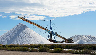 Stock of salt and equipment, Aigues-Mortes salt pans, Camargue, France, September 2013  -  Jean E. Roche/ npl