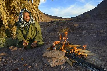 Local Berber man cooking Spiny-tailed lizard (Uromastyx nigriventris) on fire, near Ouarzazate, Morocco, October 2013  -  Daniel Heuclin/ npl