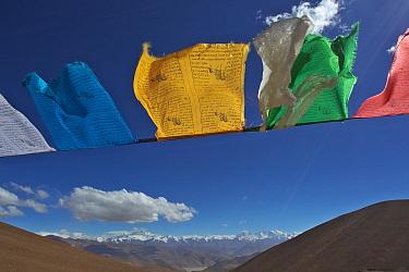 Prayer flags over a Holy Mountain, Mount Qomolangma National Park, Dingjie County, Qinghai-Tibet Plateau, Tibet, China, Asia May 2013  -  Dong Lei/ npl