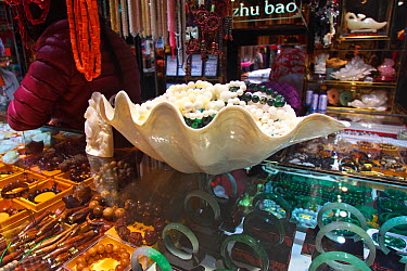 Giant clam (Tridacna gigas) shell for sale in market, Haikou City, Hainan province, China, Asia January  -  Dong Lei/ npl