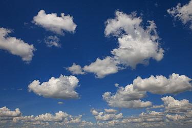 Cumulus clouds, Serra da Canastra National Park, Brazil January 2014  -  Ingo Arndt/ npl