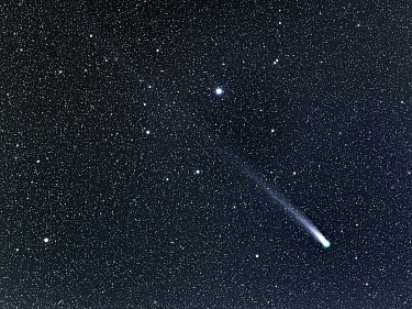 Comet C, 2013 R1 (Lovejoy) streaming past the star Sarin (HIP 84379) in the Hercules Constellation as it leaves perihelion (its nearest point to the sun) and returns on its orbit to outer space Taken...  -  Charlie Summers/ npl